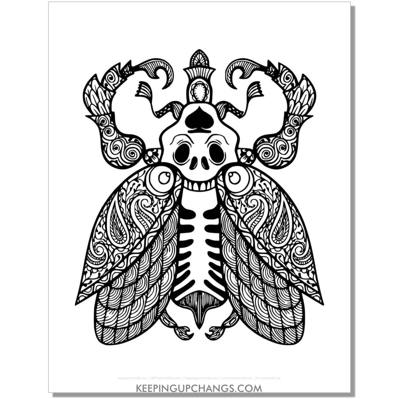 skeleton beetle mandala adult halloween coloring page.
