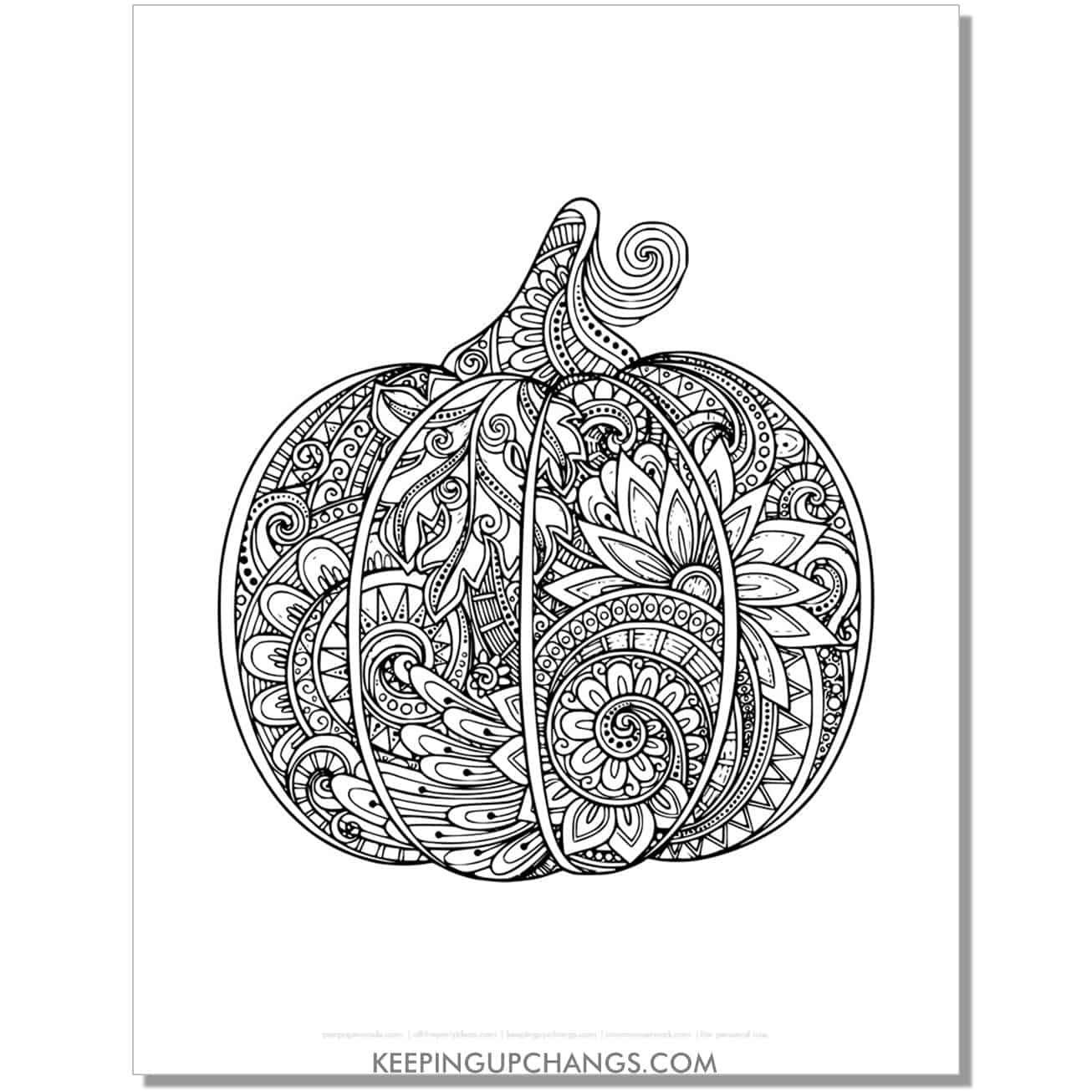 intricate floral pumpkin zentangle adult halloween coloring page.