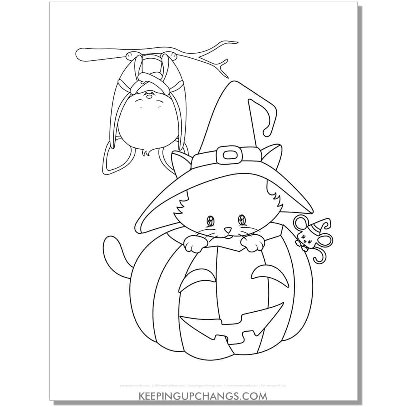 kawaii halloween cat with jack o lantern and hanging bat coloring page.