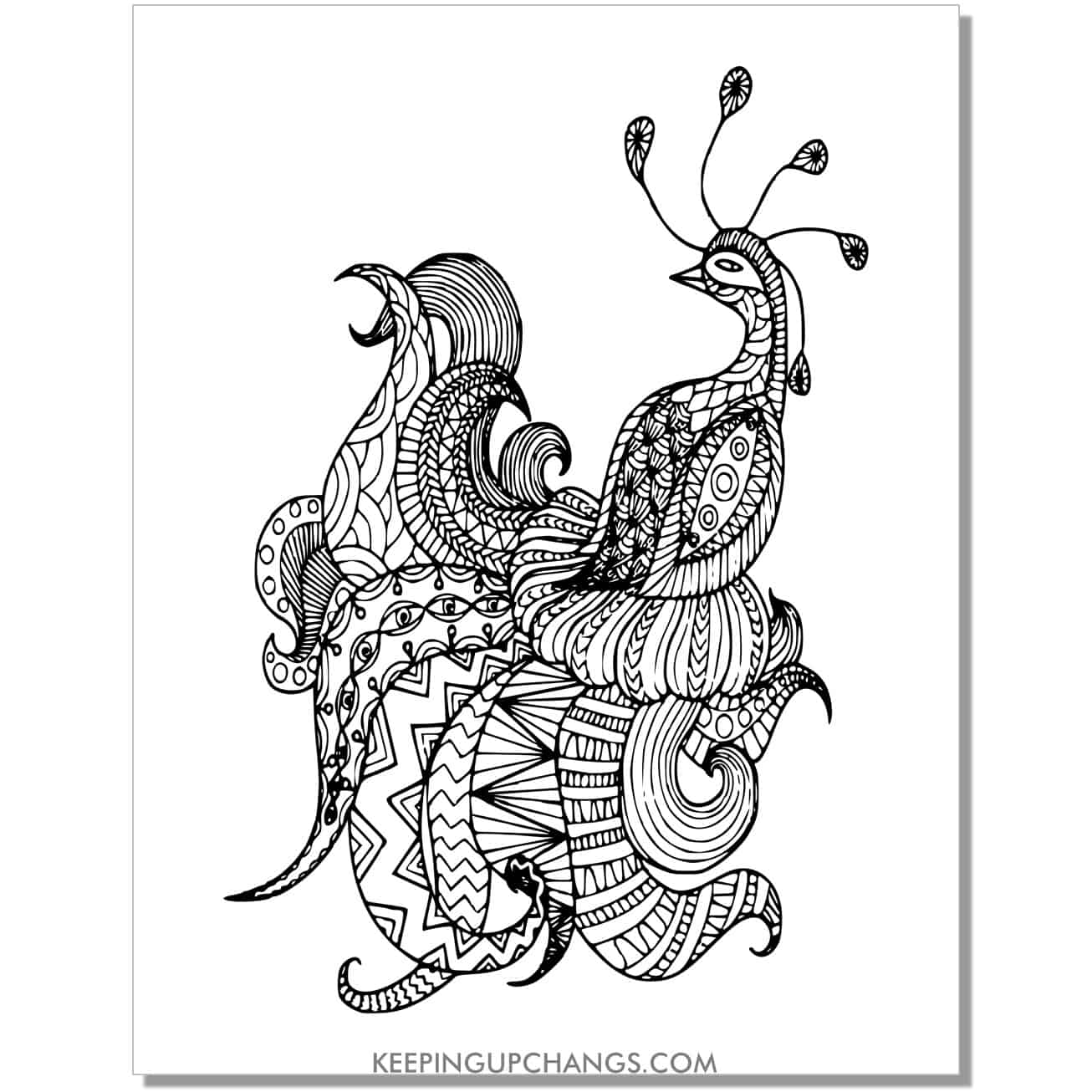 difficult peacock coloring page.