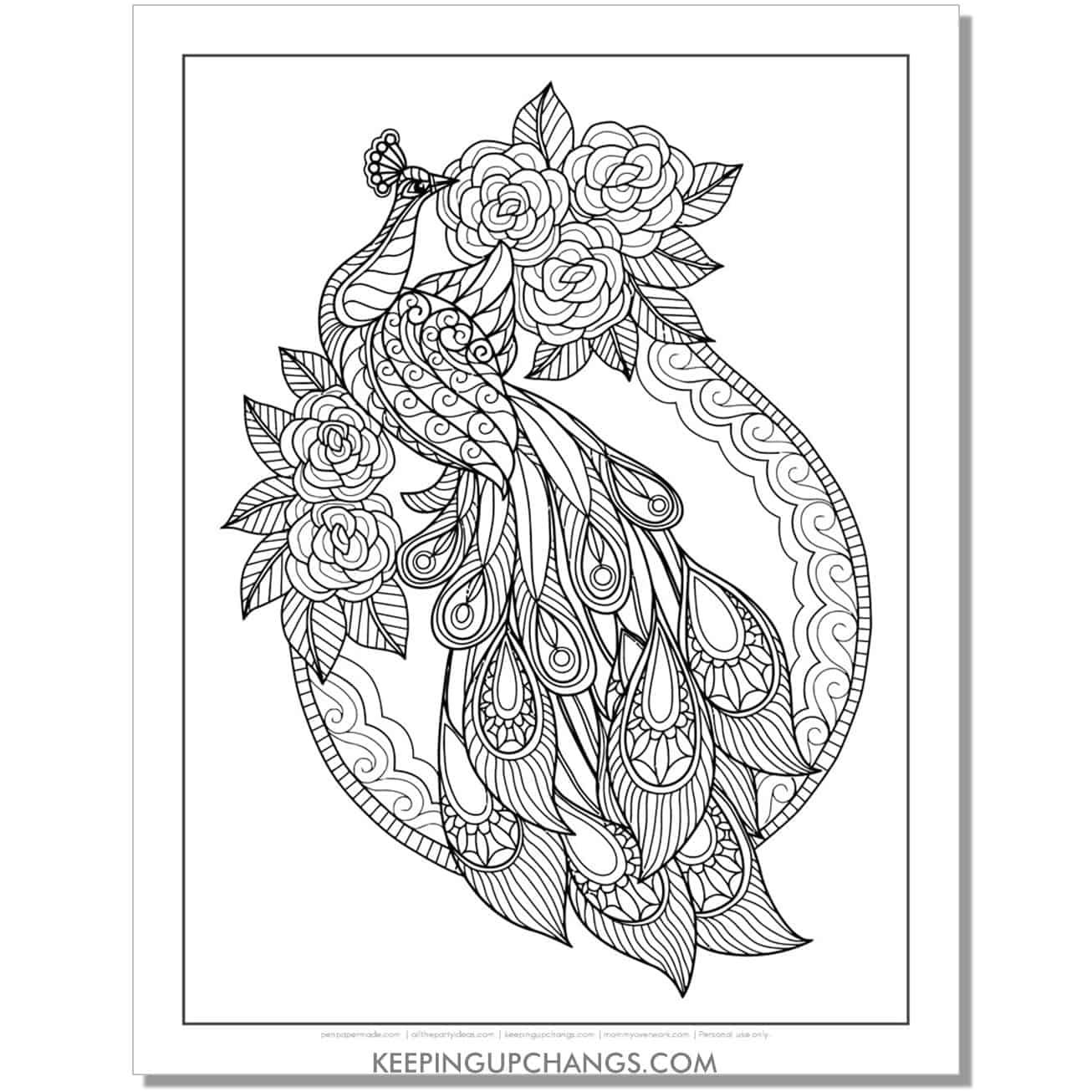 rose princess peacock coloring page.