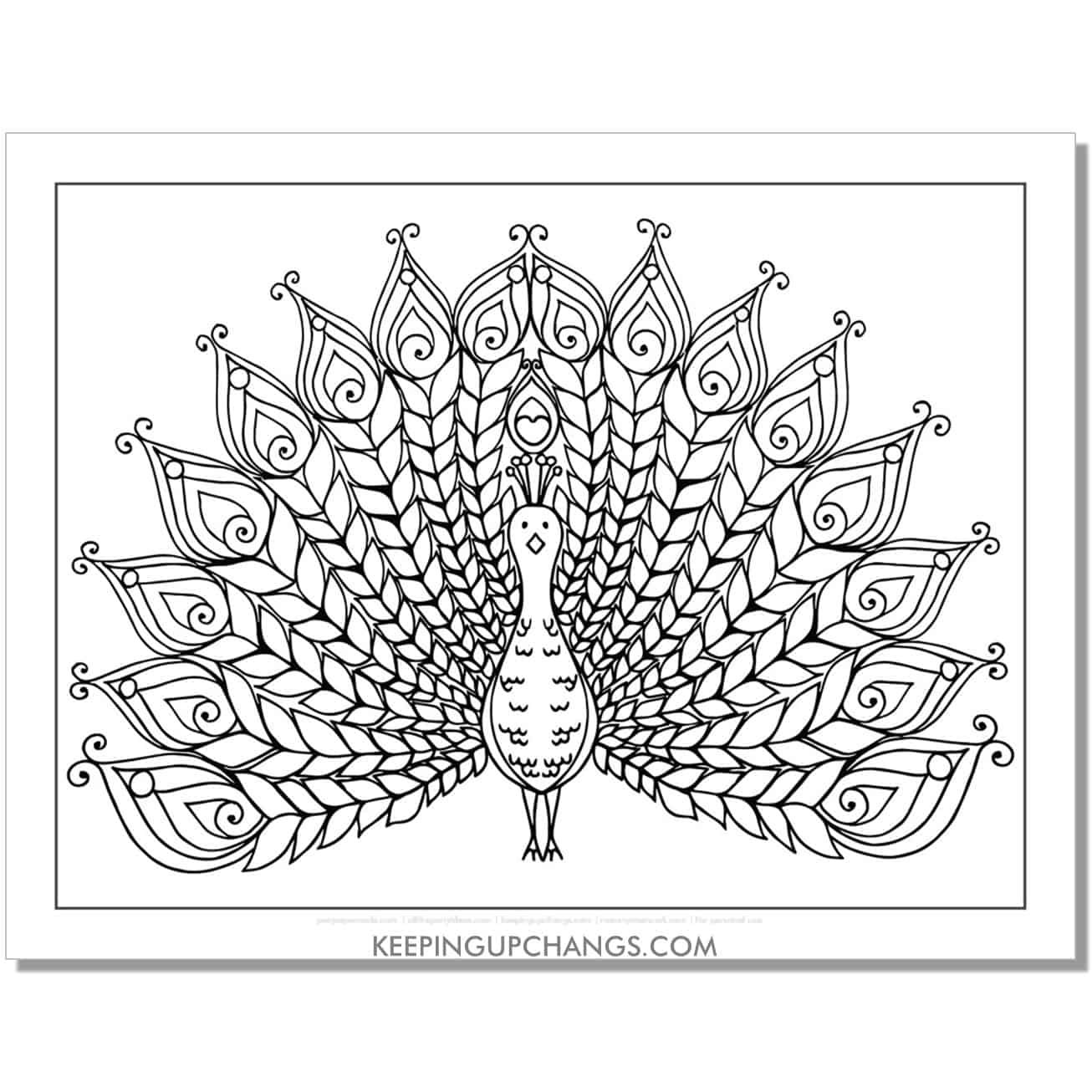 silly peacock coloring page.