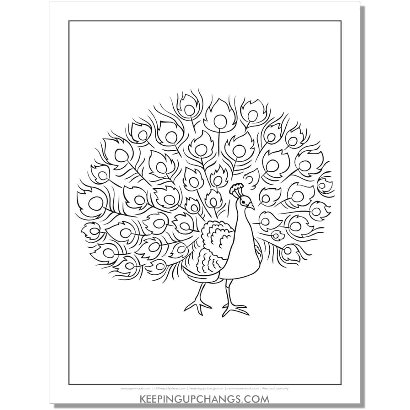 simplified peacock coloring page outline.