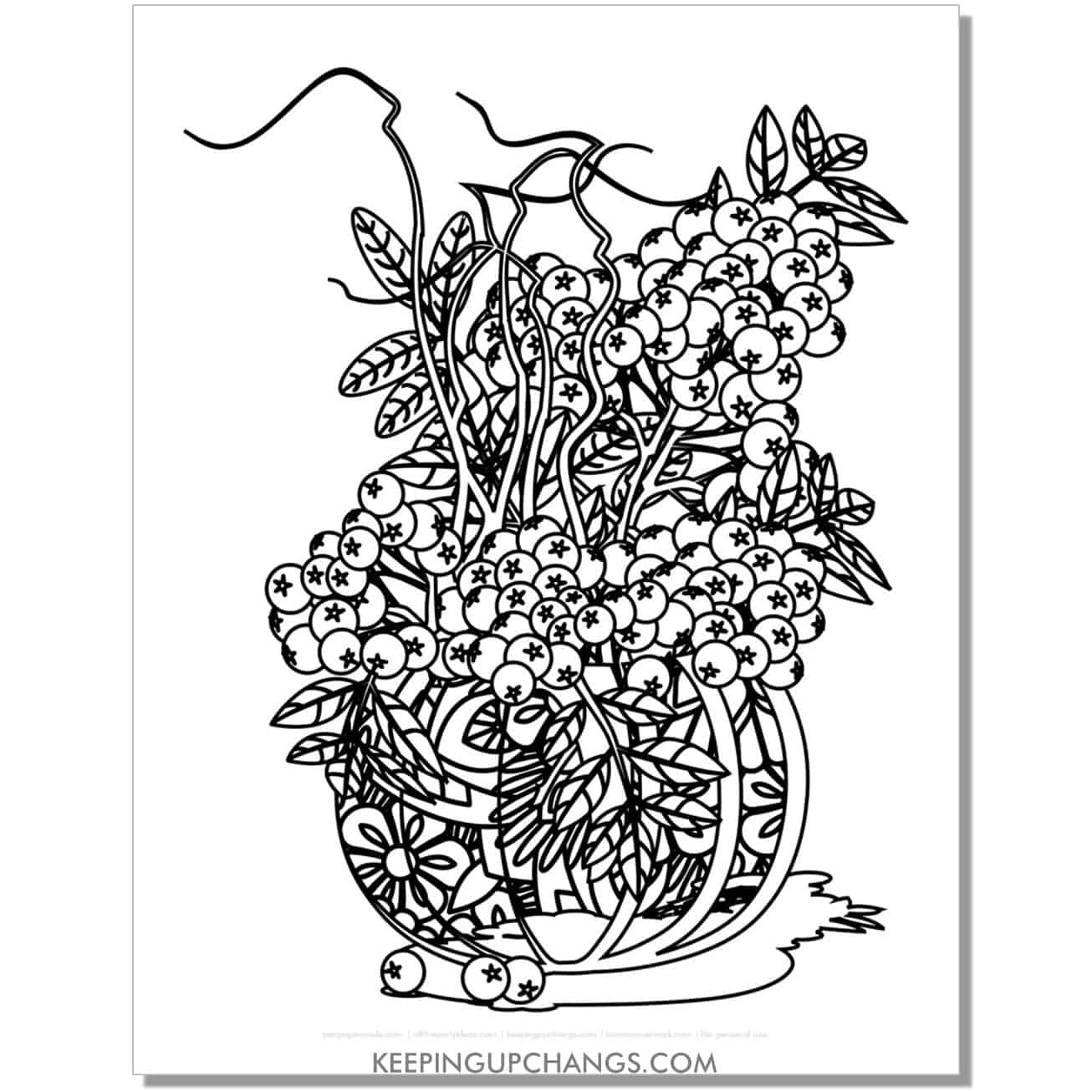 free zentangle fall pumpkin coloring page for adults with berries.