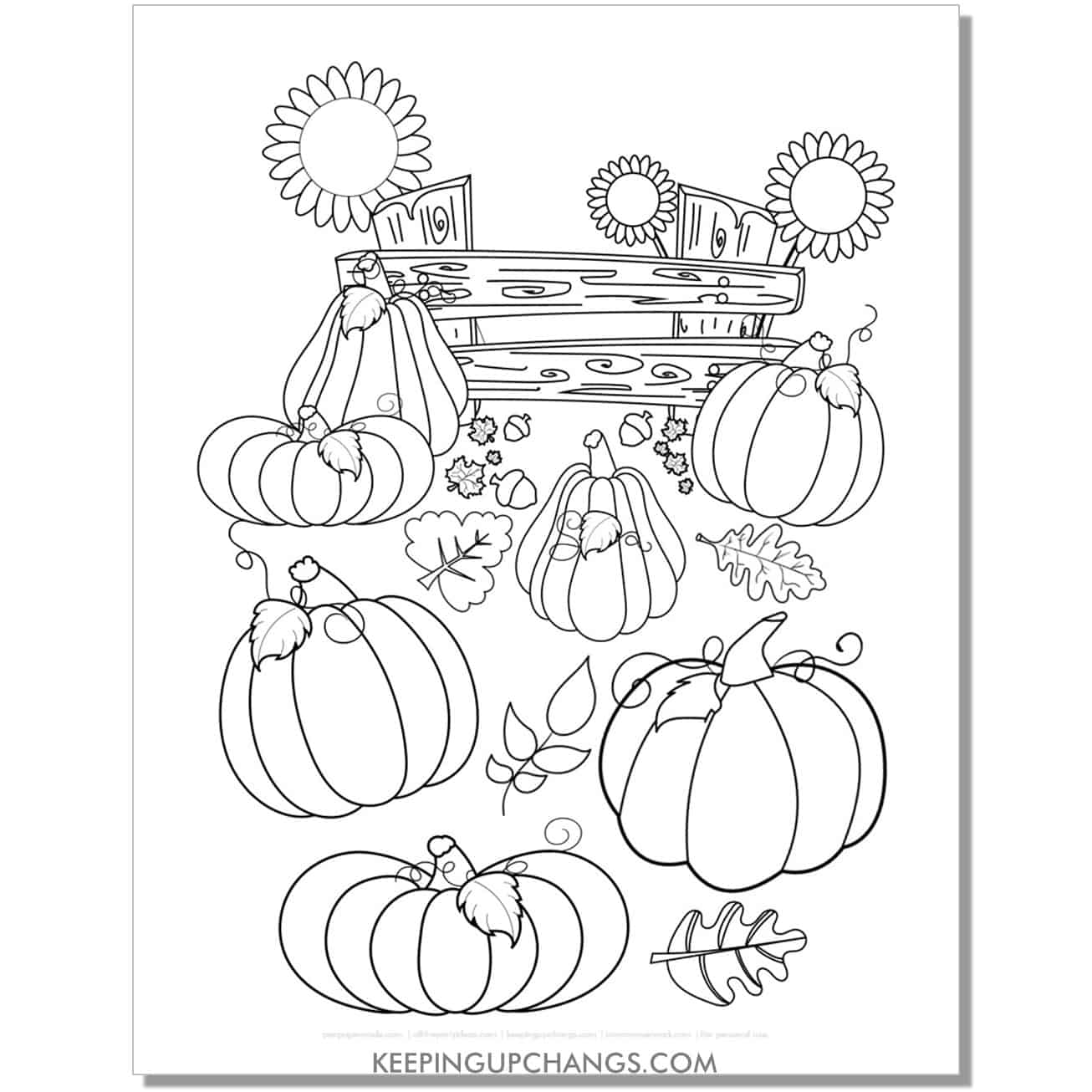 free pumpkin patch harvest with sunflower coloring page for fall, thanksgiving.