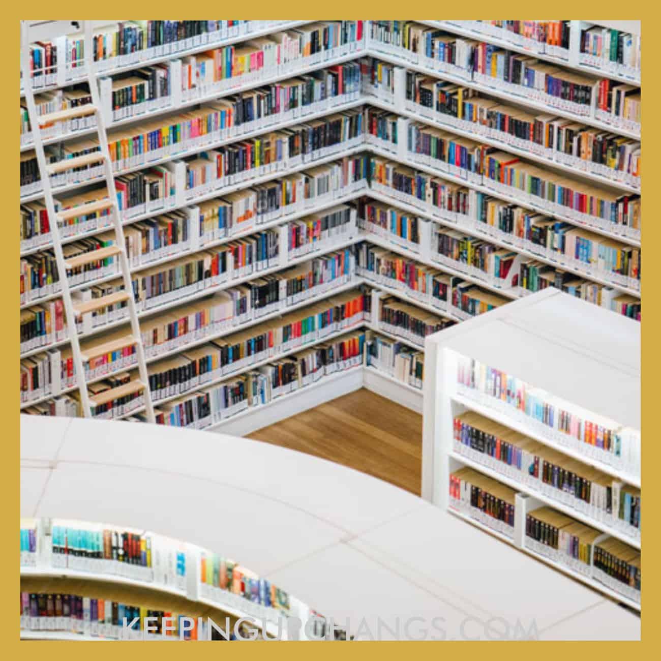library bookshelves full of books.